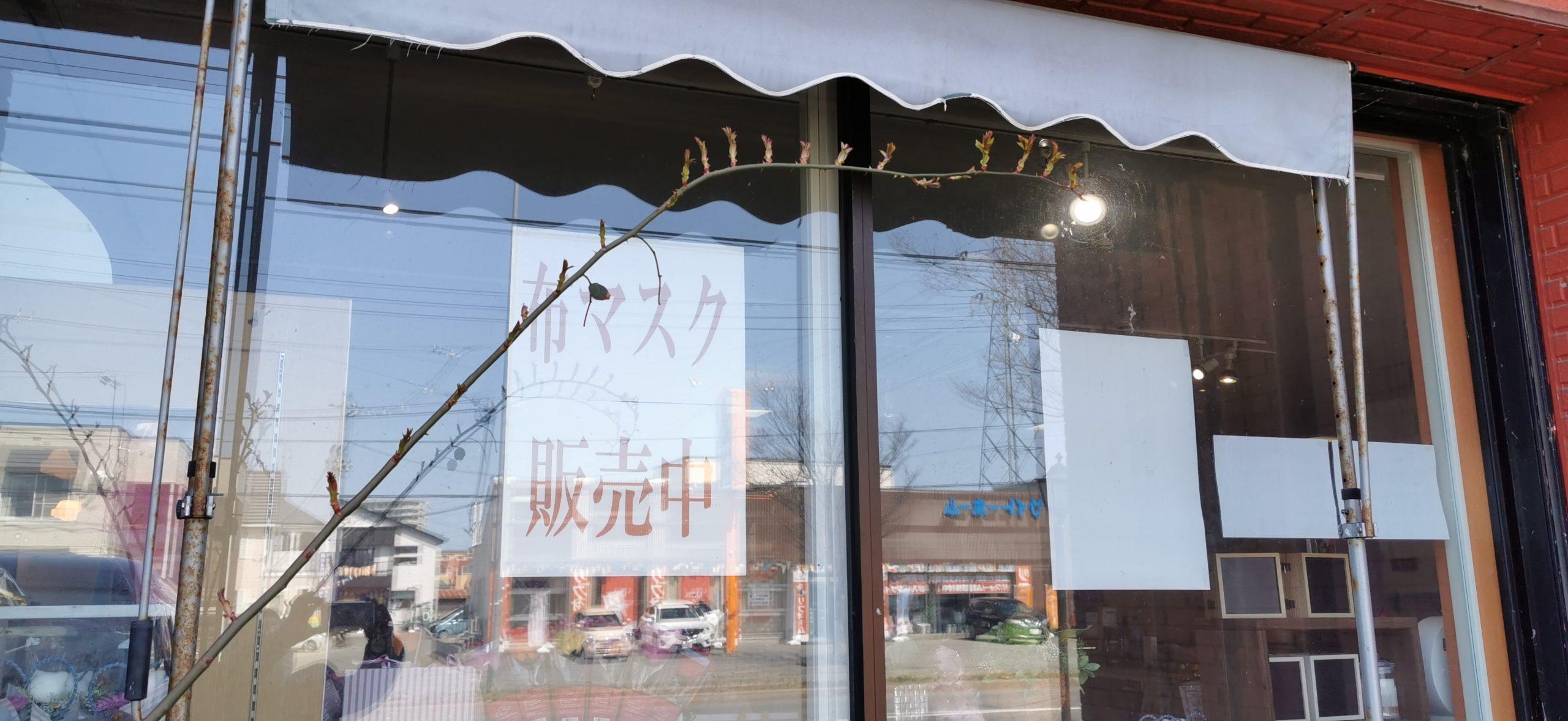 売っ マスク てる 市 ところ 青森 【ドンキホーテ入荷情報】マスク売ってる店舗どこ?在庫,時間,値段は